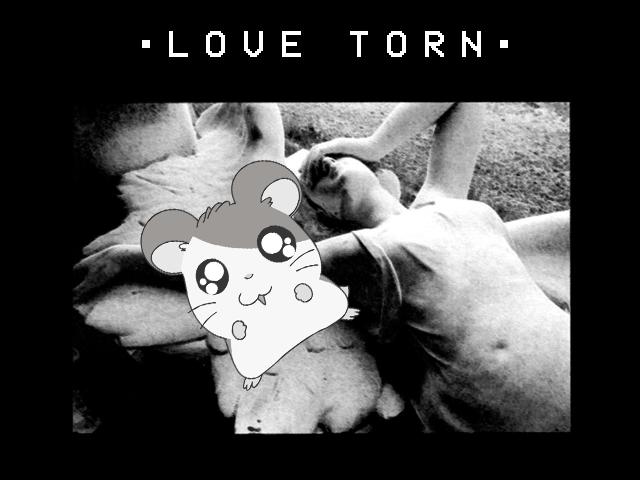 love torn art